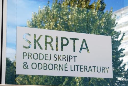 kupastudio_KIN BrandStore Pardubice UPCE-08